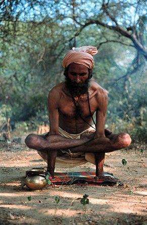 yoga stretches lotus pose