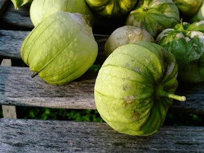 green pipian recipe