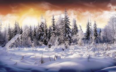 Winter  achtergrnd met sneeuw landschap