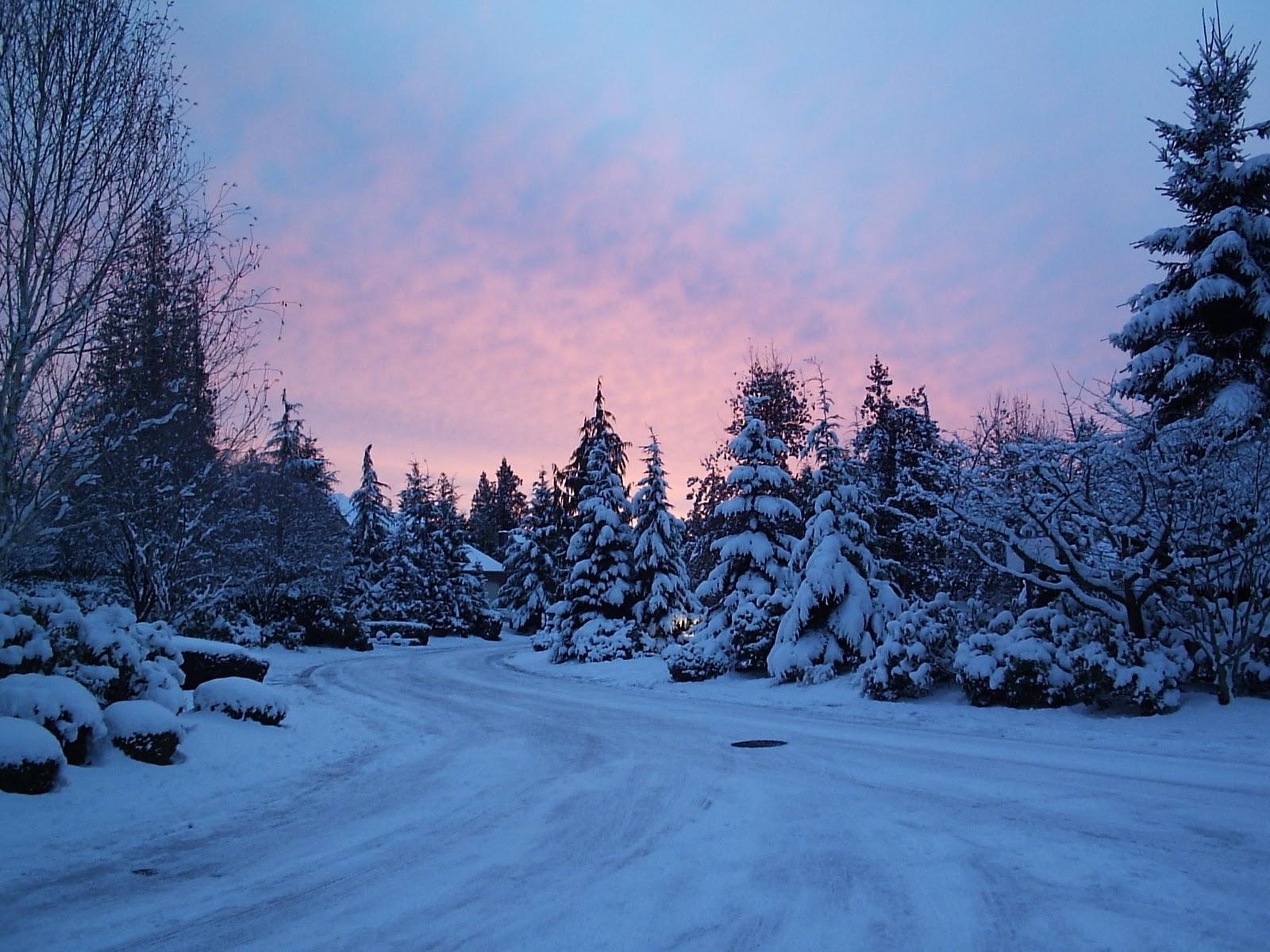 s1600 winter achtergronden winter - photo #8