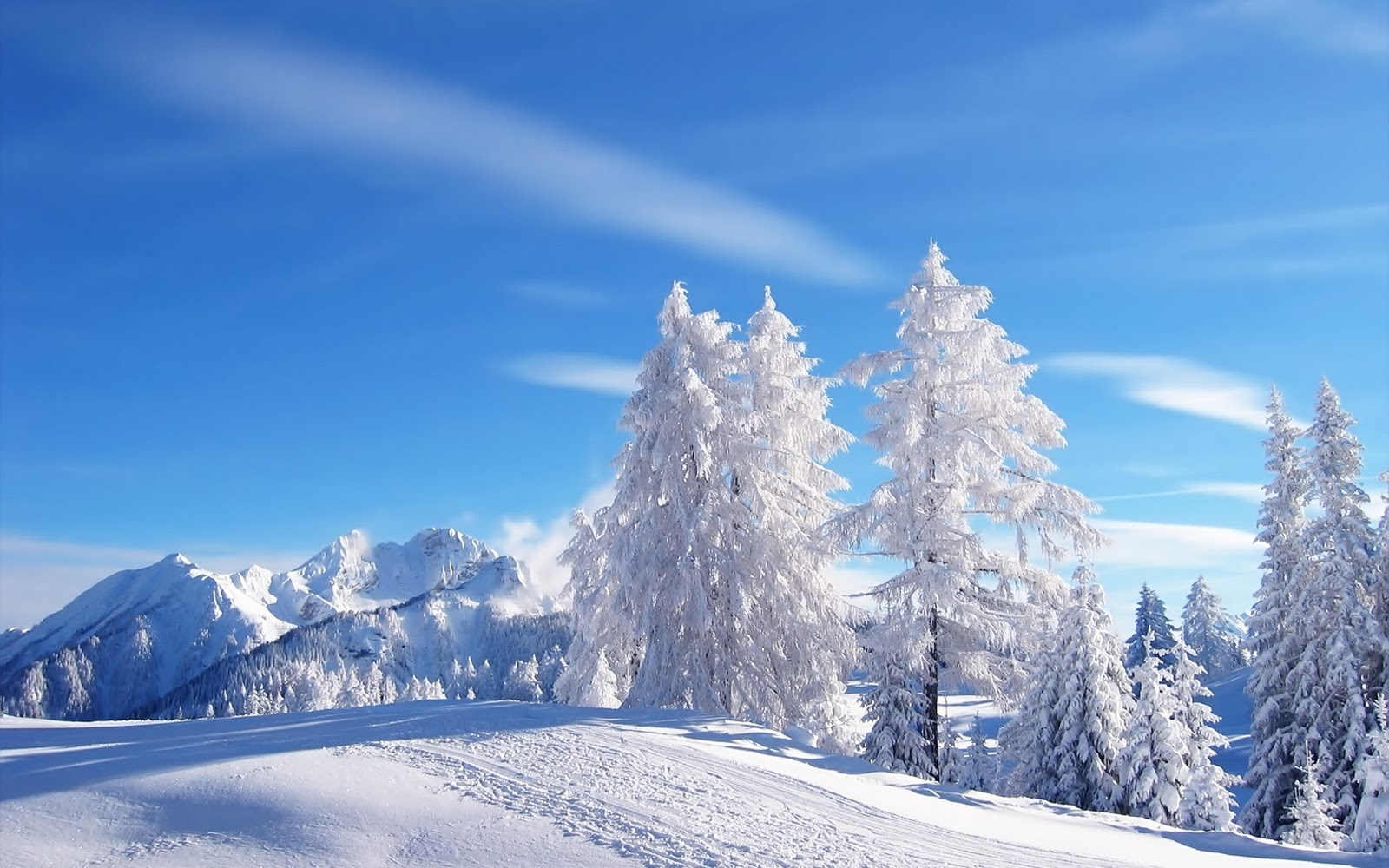 Famous New York City Snow Blizzards