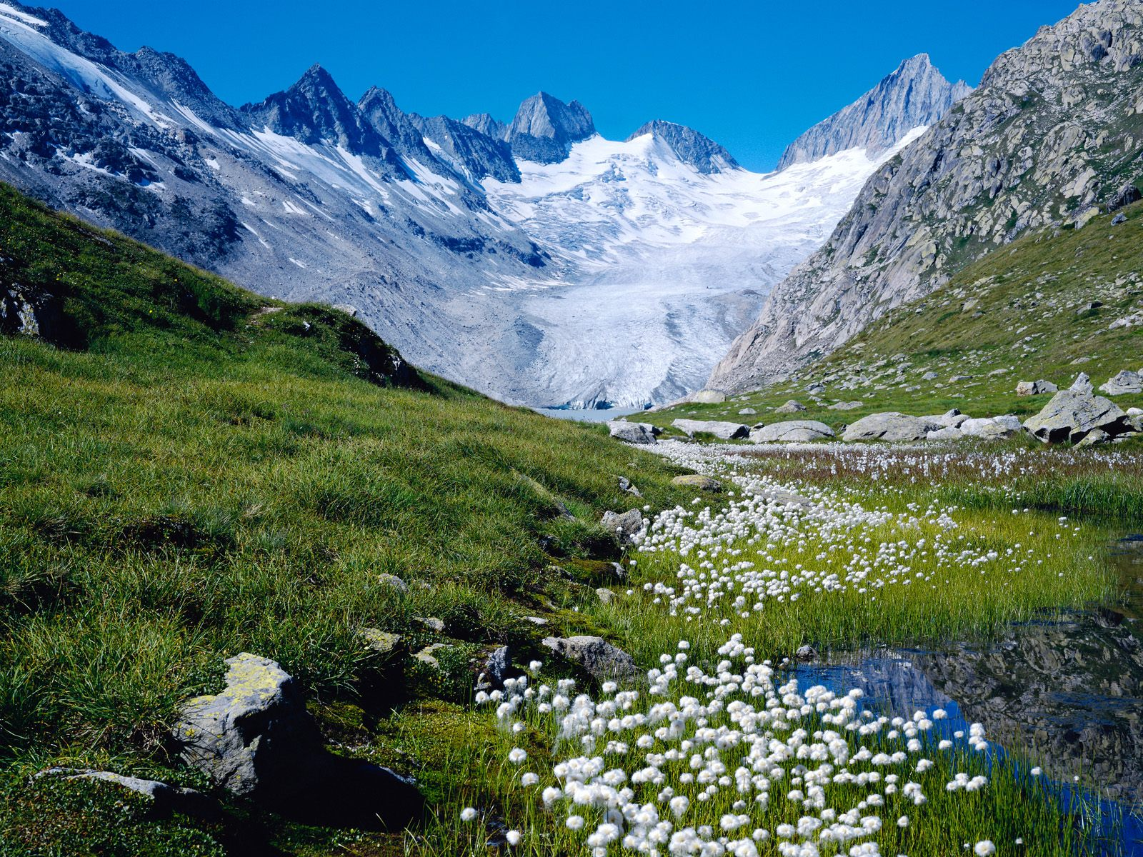 Heidi hills from austria 1