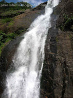 palaruvi waterfalls,palaruvi,40th highest indian waterfalls,3rd highest kerala waterfalls,waterfalls in kollam district kerala,south indian waterfalls,kallada river waterfalls,horse tail shaped waterfalls,stream of milk,single drop waterfalls