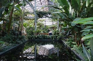 Theora Kvitka Garfield Park Conservatory