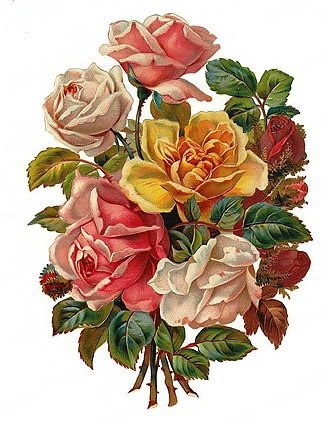 http://2.bp.blogspot.com/_RMCpeoYTjOg/S0OeI2XR_dI/AAAAAAAABO8/RZ5CvAM-fQA/s400/free-vintage-white-yellow-pink-red-roses-bouquet-clip-art.jpg