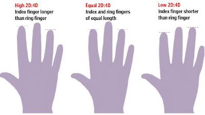 Longer Ring Finger Testosterone Dnews