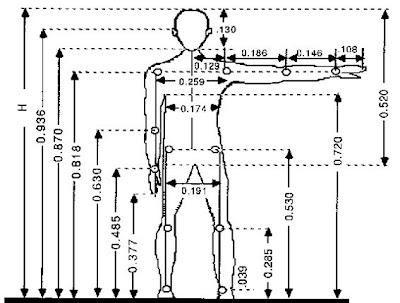 Ultralivianos experimentales antropometr a for Antropometria libro