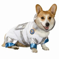 Windowshoppist: Astronaut Dog Costume ($10)