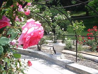 La rosaleda de Madrid. No apto para alérgicos