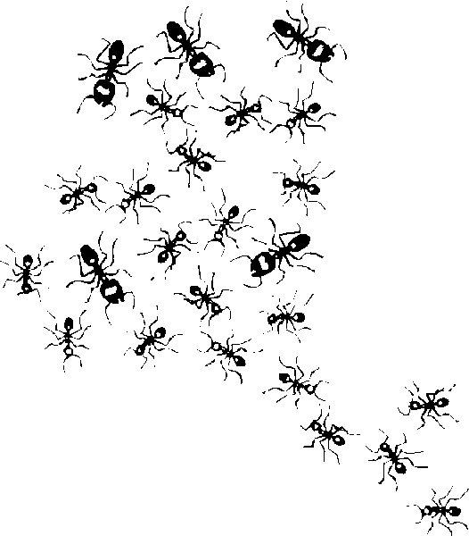 adelilo je fais tout moi m me anti fourmis. Black Bedroom Furniture Sets. Home Design Ideas