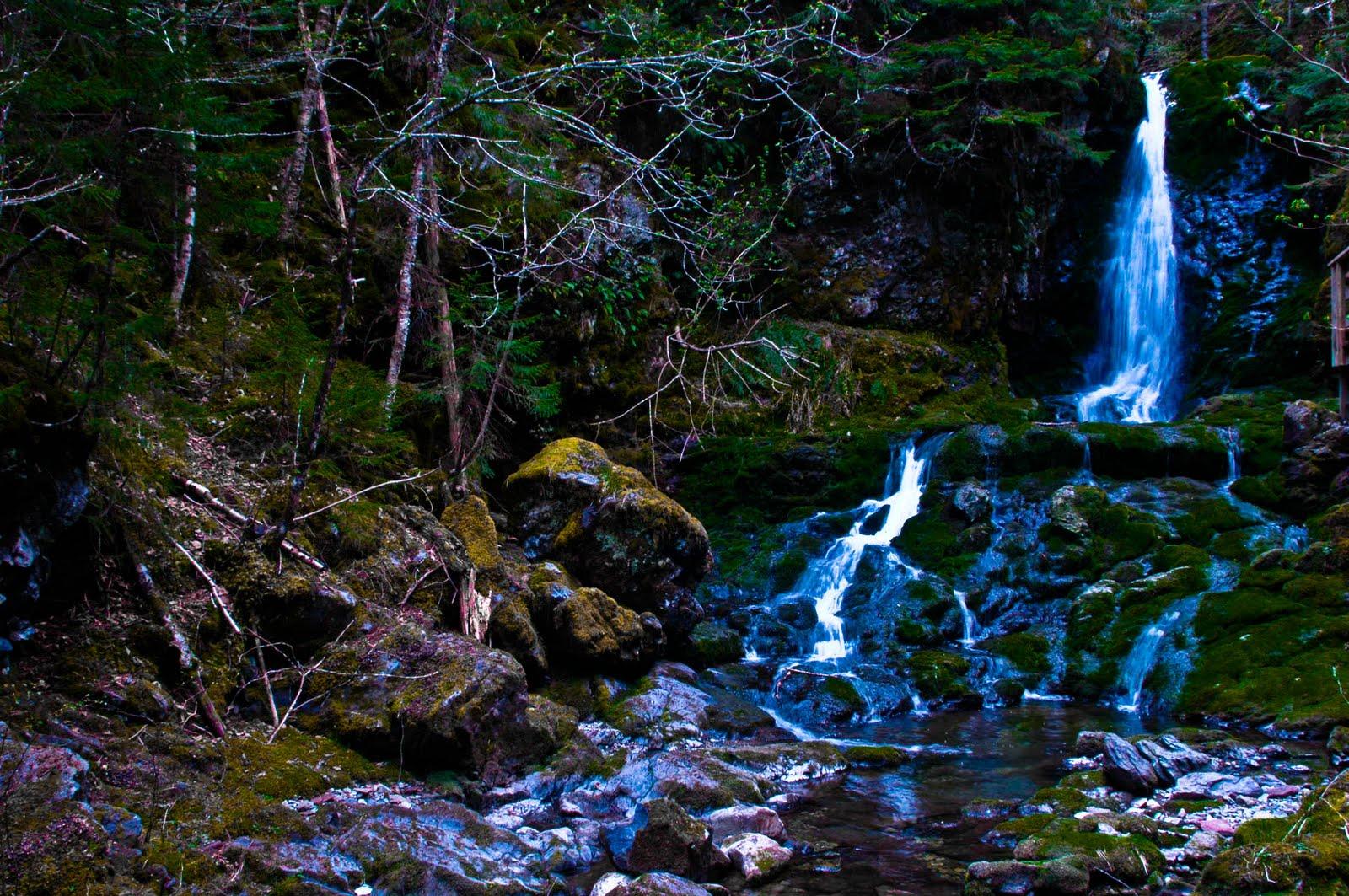 Waterfalls Alberta February 2011