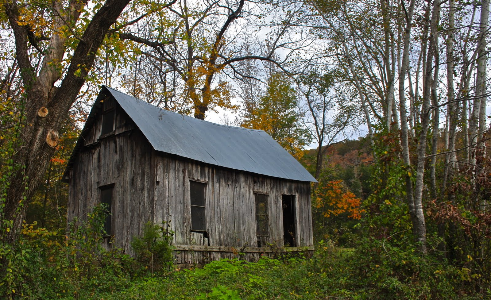 Little Lost Valley Cabin: Thresher Family Follies: Roark Bluff At Steele Creek