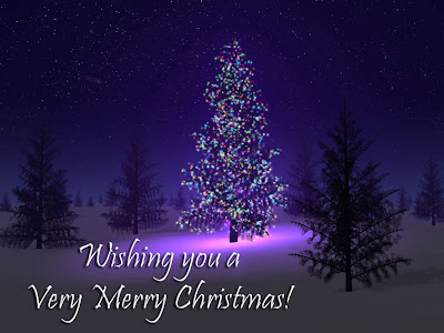 wishing you and your family a very merry christmas