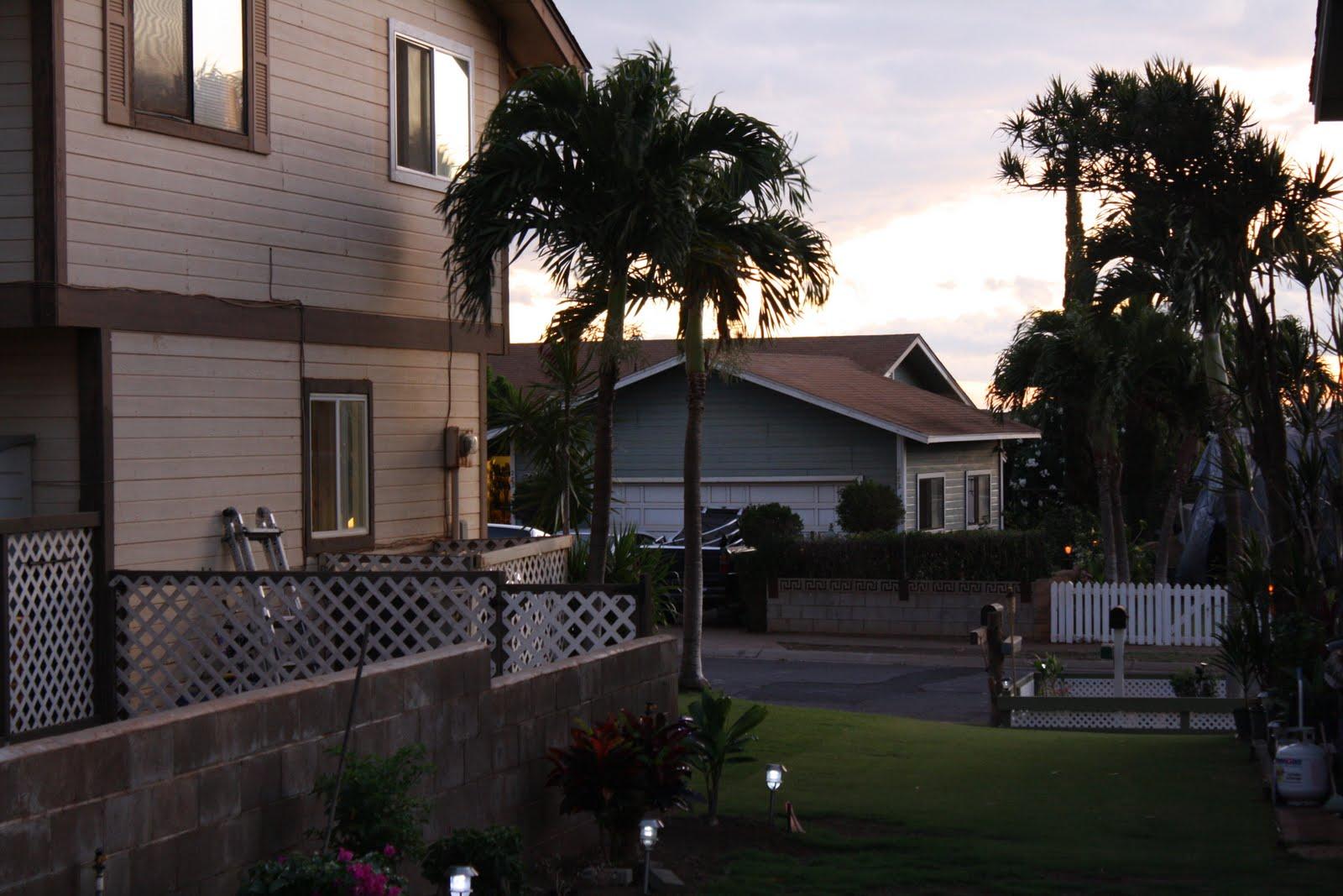 Backyard Paradise: Hawaii: Backyard Paradise