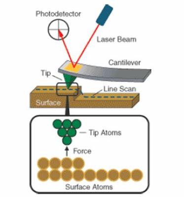 Tecnologia Medica Microscopio De Fuerza Atomica