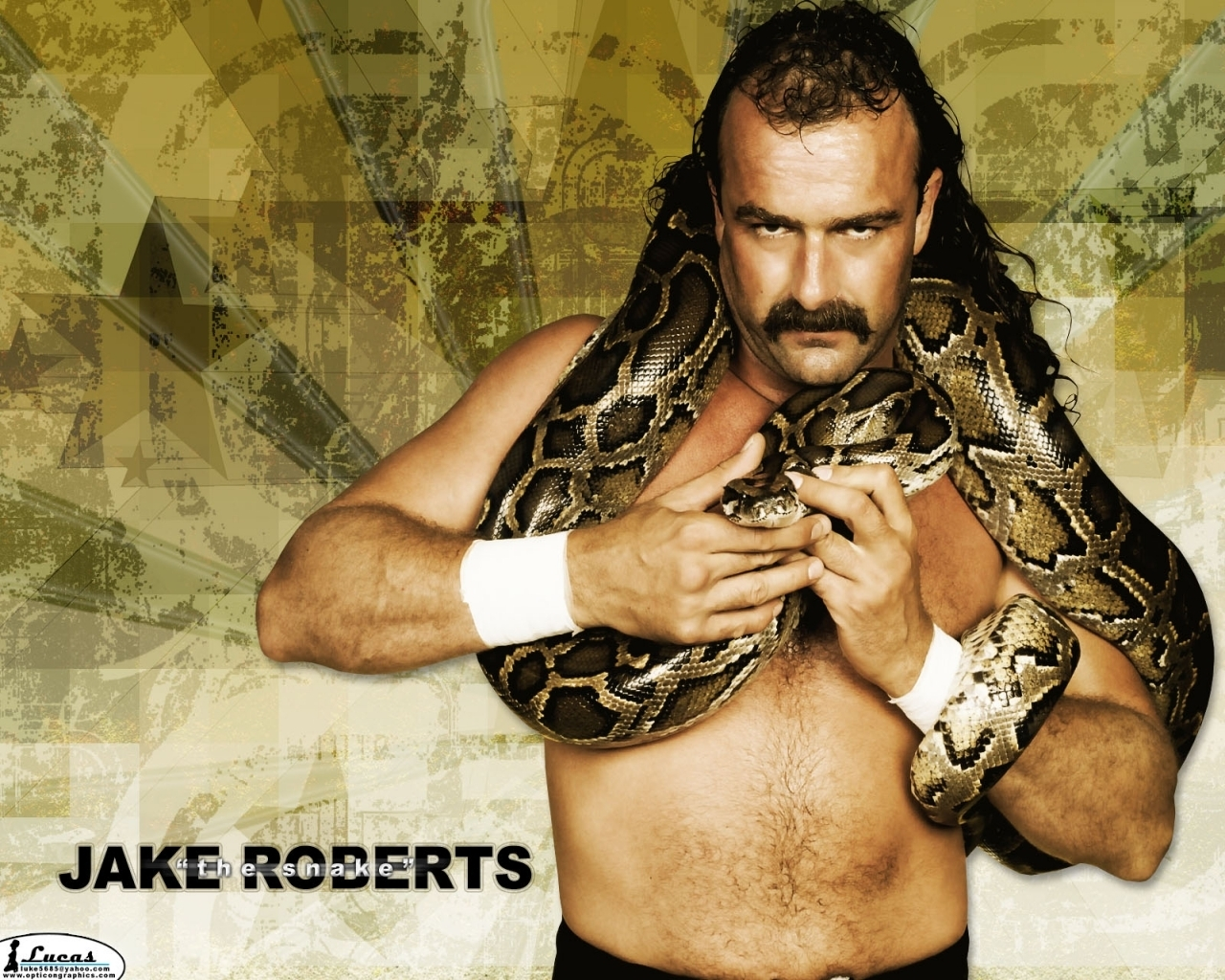 Cool Wallpapers Jake The Snake Roberts Wallpapers