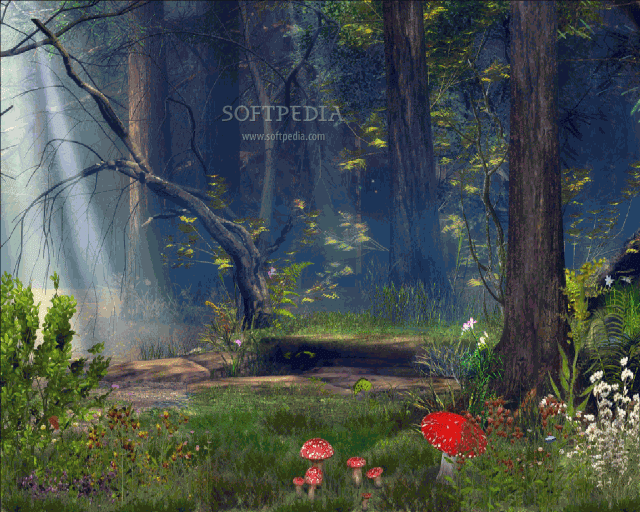 Download Forest Animated Wallpaper Gallery