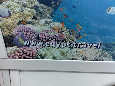 Egypt tourism promotion