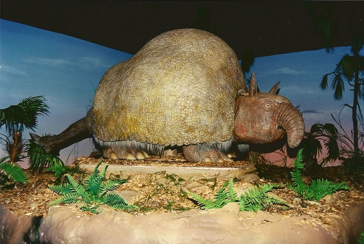 The gallery for --> Indricotherium Ice Age
