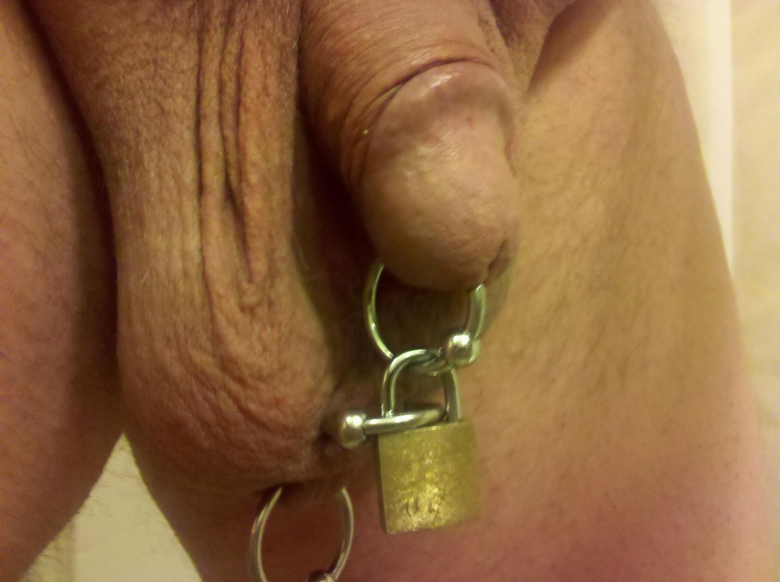 chastity piercings Male