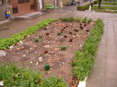 Another Plastic Bottled Public Garden