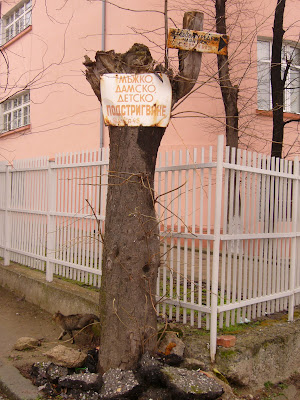 Old Yambol Tree Signs