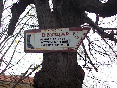 A Yambol Signposted Tree
