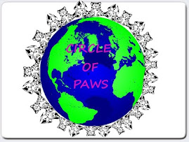 JOIN PAWS