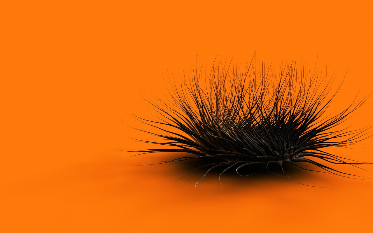 Latest Cool Animated Orange Wallpapers ~ MyClipta