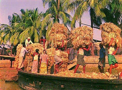 ভাদ্র আশ্বিনে এই দৃশ্য দেখতাম বাড়ির জানালা থেকে-সব ইতিহাস হতে চলেছিল