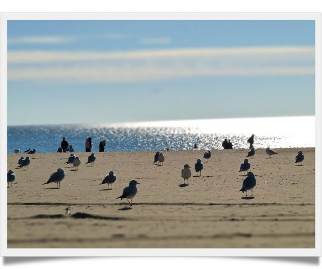 Coney Island Beach: Walk In New York: Coney Island Beach