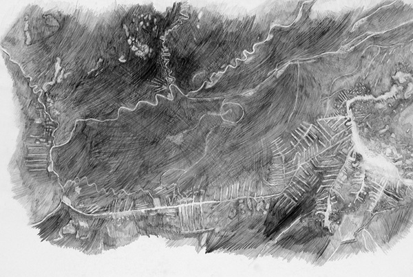 Susan Turcot  Unfixed [from serie drawings made during residency in Acre, Brazil, as part 27th Sao Paolo Bienal, 2006 pencil on paper