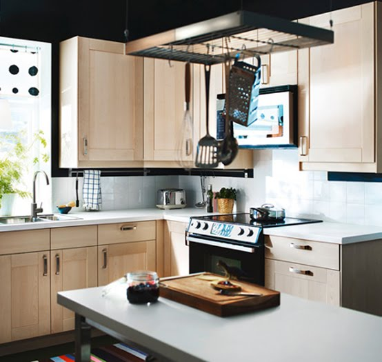 Ideas de dise o de cocinas ikea 2011 mervin diecast - Ikea diseno de cocinas ...