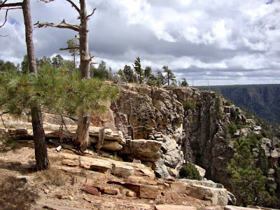 Mogollon Rim, AZ, photo by Robin Atkins