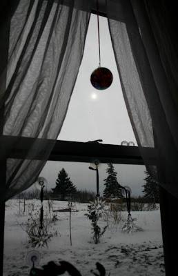 Bloomingwriter: Gardening in Nova Scotia: January 2009