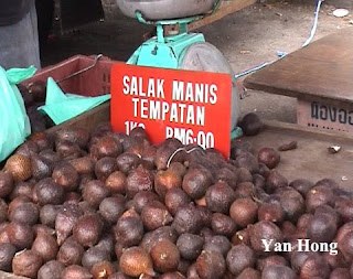The Pahang Sweet Salak Fruit