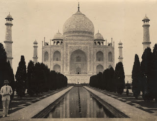 The Taj Mahal, National Library of Medicine's (NLM) Profiles in Science ,