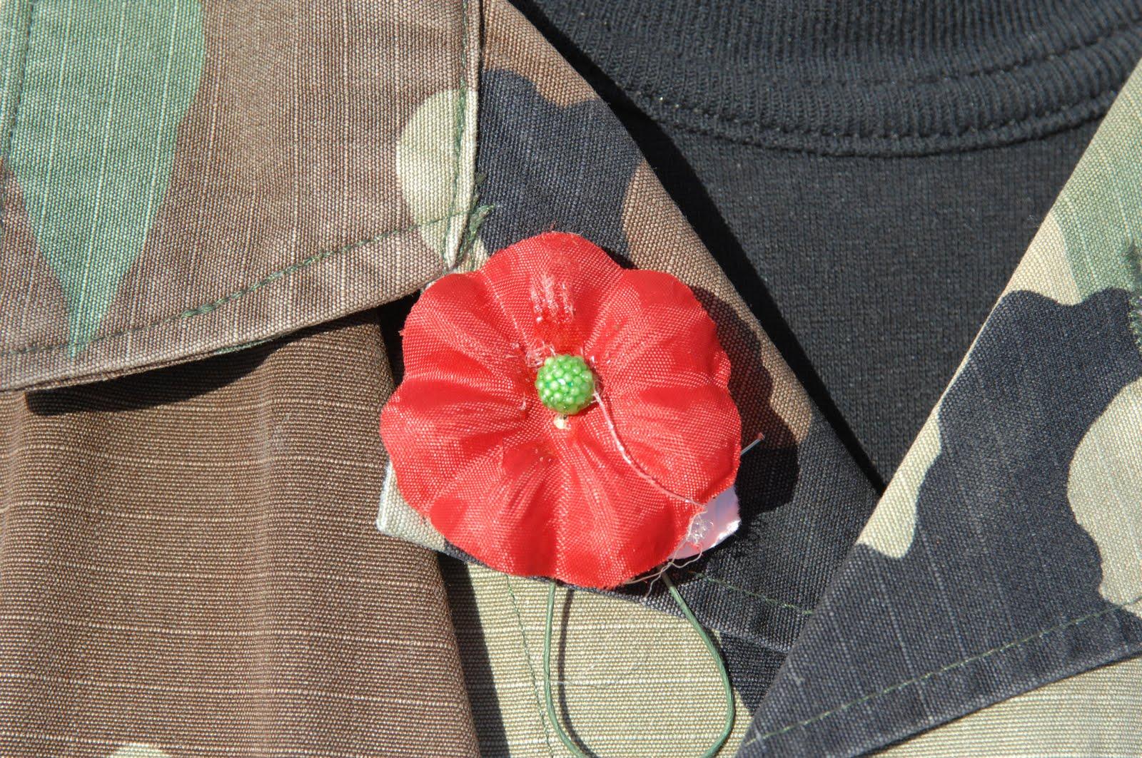 Buddy Poppies (Poppy) Veterans Day Public Domain Clip Art ...