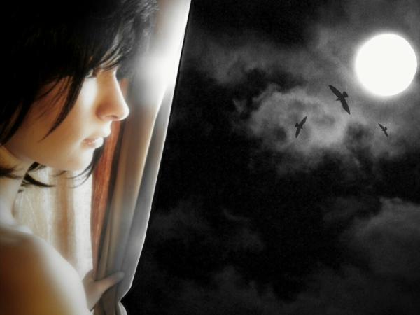 ◊۩¯−ـ‗ نــــزف ‗ـ−¯۩◊ moon-night_size_600x