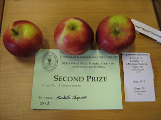 Prize winning apples at Chippenham show