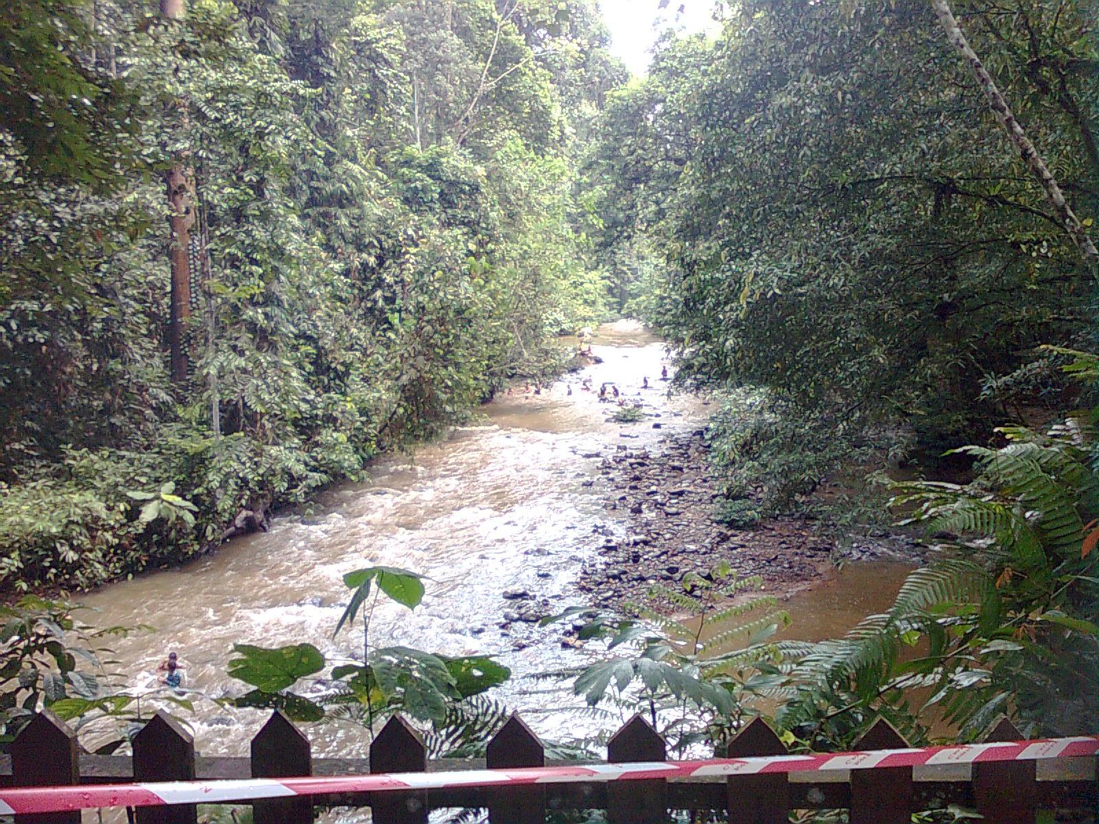 Kancil 8349 Jalan  Jalan Ke Taman Bukit Tawau
