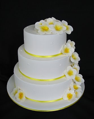 Frangipani wedding cake with yellow satin ribbon Two tier cake with yellow