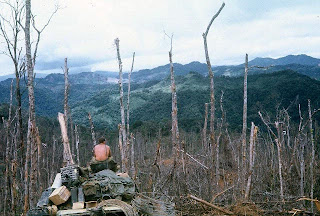 This is the picture of Hamburger Hill, Vietnam during the battle of Dong Ap Bia, May 1969