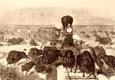 Image result for hunting bison from trains