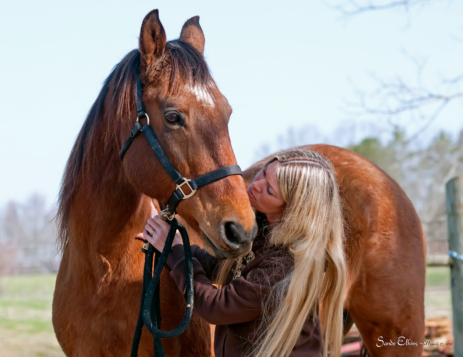 equine protozoal myeloencephalitis epm essay Learn to recognize the symptoms of epm equine protozoal myeloencephalitis (epm) is a master of disguise this serious disease, which attacks the horse's central nervous system, can be difficult to diagnose because its signs often.