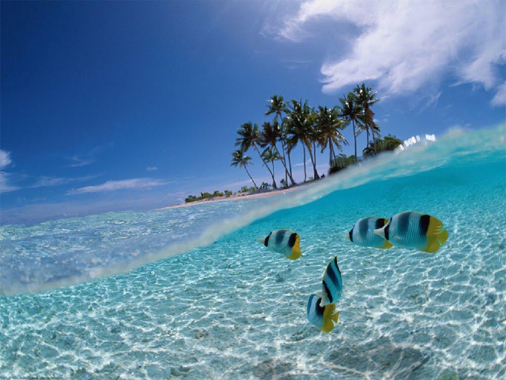 Gambar Wallpaper Pemandangan Laut