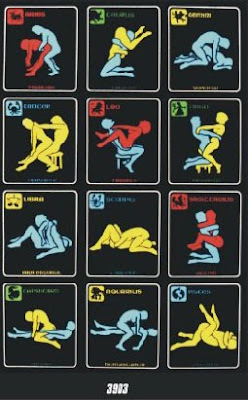 Zodiac Sex Positions Poster 69