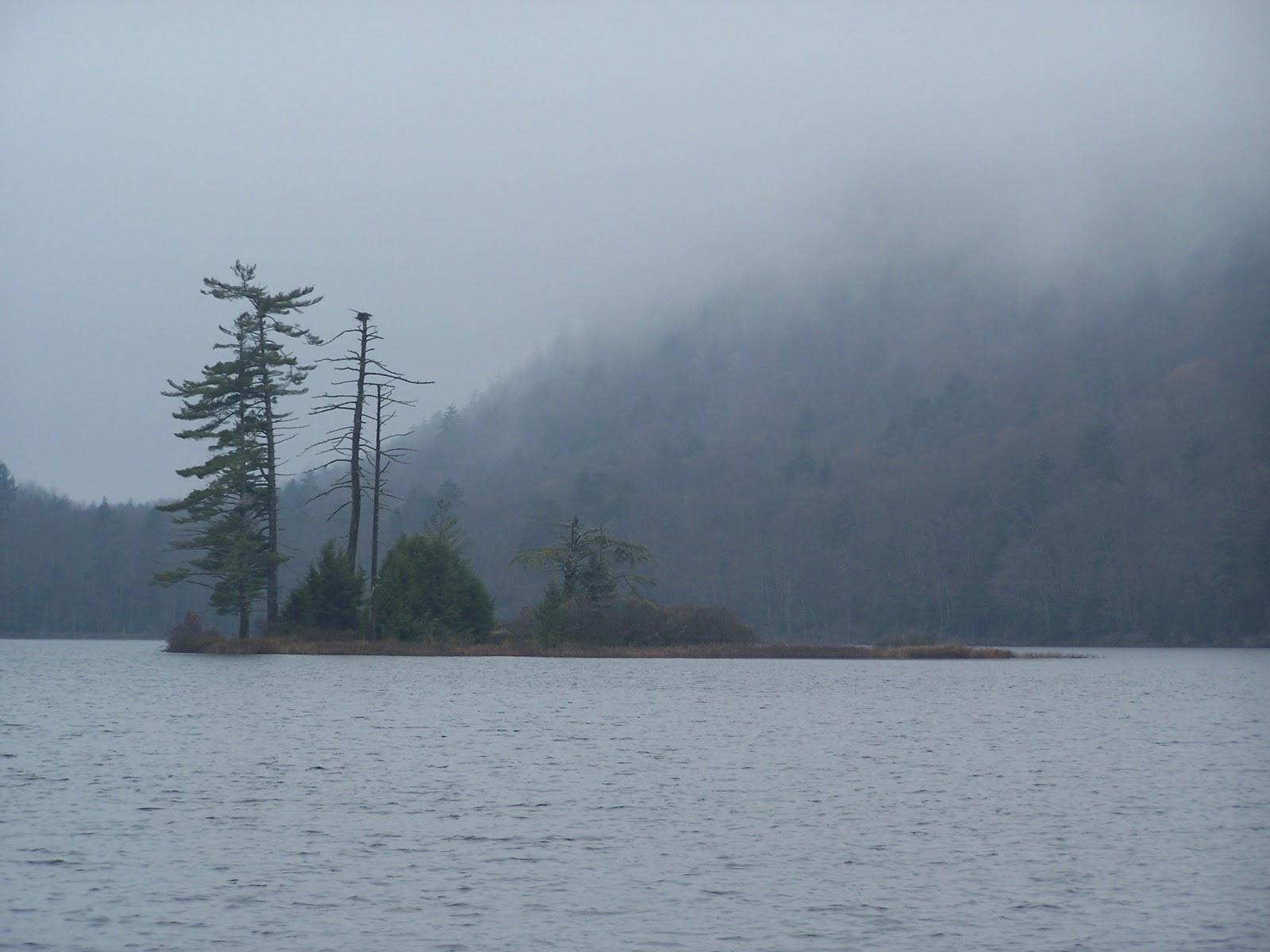 Quiet Kayaking in New York State: Moss Lake