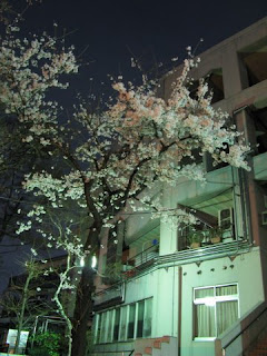Yotsuya No.6 Junior High School.