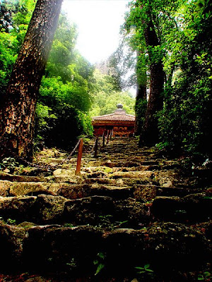 Tachikue Gorge Shimane